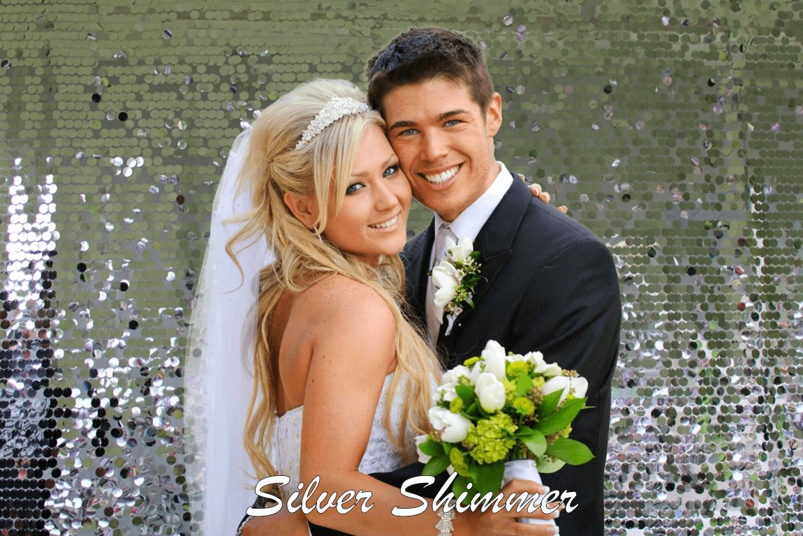 silver backdrop-003 (Medium).jpg